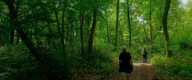 002 Michel and Patrick Walking Near Trosly